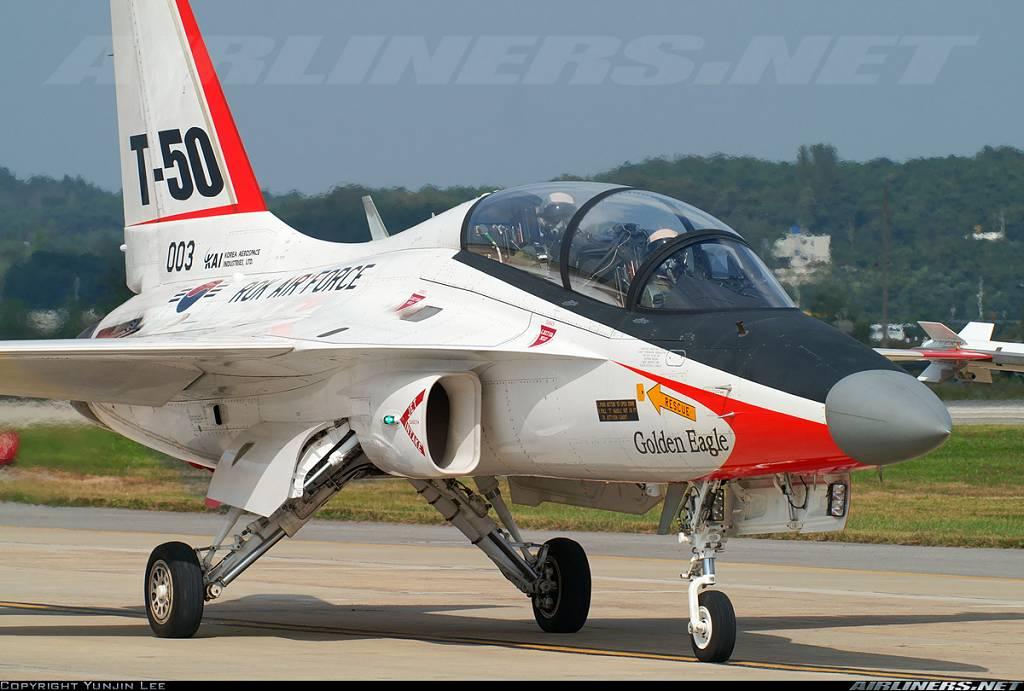 Looking for T-50 Golden Eagle plans - RCU Forums
