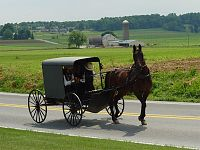 Click image for larger version  Name:amish.jpg Views:198 Size:129.5 KB ID:1906586