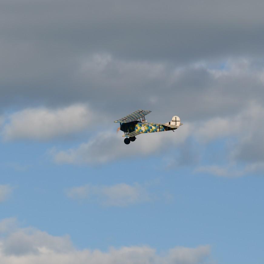 Click image for larger version  Name:Fokker D7 Max Holtzem.jpg Views:61 Size:41.7 KB ID:1909256