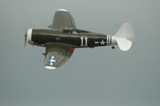 Click image for larger version  Name:p47%20white%20tail.jpg Views:1170 Size:41.6 KB ID:1949637