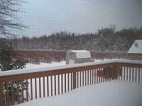Click image for larger version  Name:IMG_8562.JPG Views:157 Size:1.05 MB ID:1955250