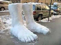 Click image for larger version  Name:two feet of snow.jpg Views:209 Size:11.9 KB ID:1973027