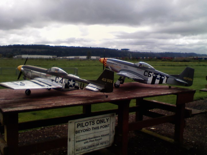 Click image for larger version  Name:Two P-51s.jpg Views:28 Size:57.7 KB ID:1985774