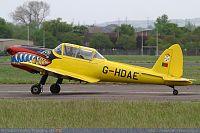 Click image for larger version  Name:chipmunk_2.jpg Views:182 Size:360.7 KB ID:2002699
