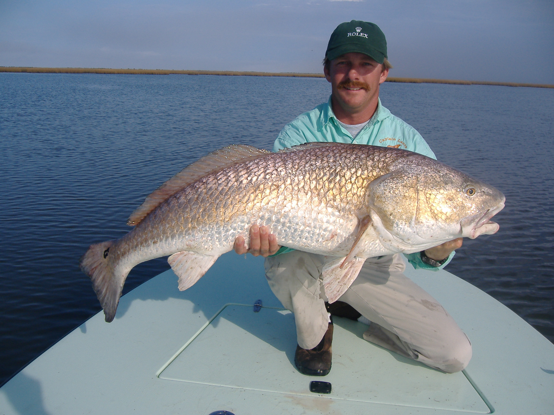 Click image for larger version.  Name:Fish 36lb.JPG Views:34 Size:742.0 KB ID:2064030