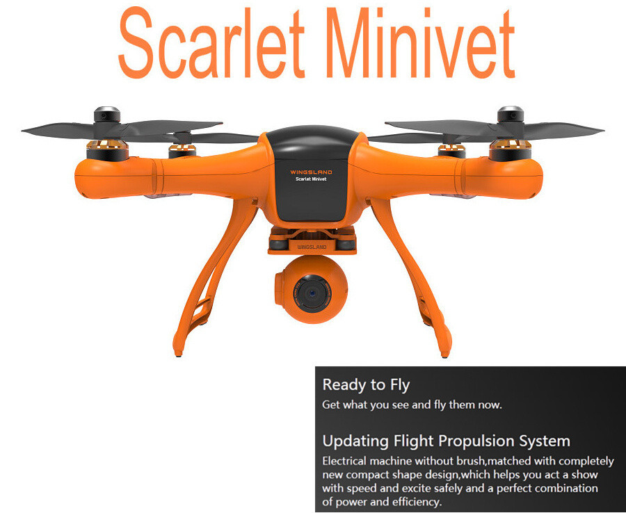 Click image for larger version  Name:Wings-3.jpg Views:96 Size:142.6 KB ID:2108660