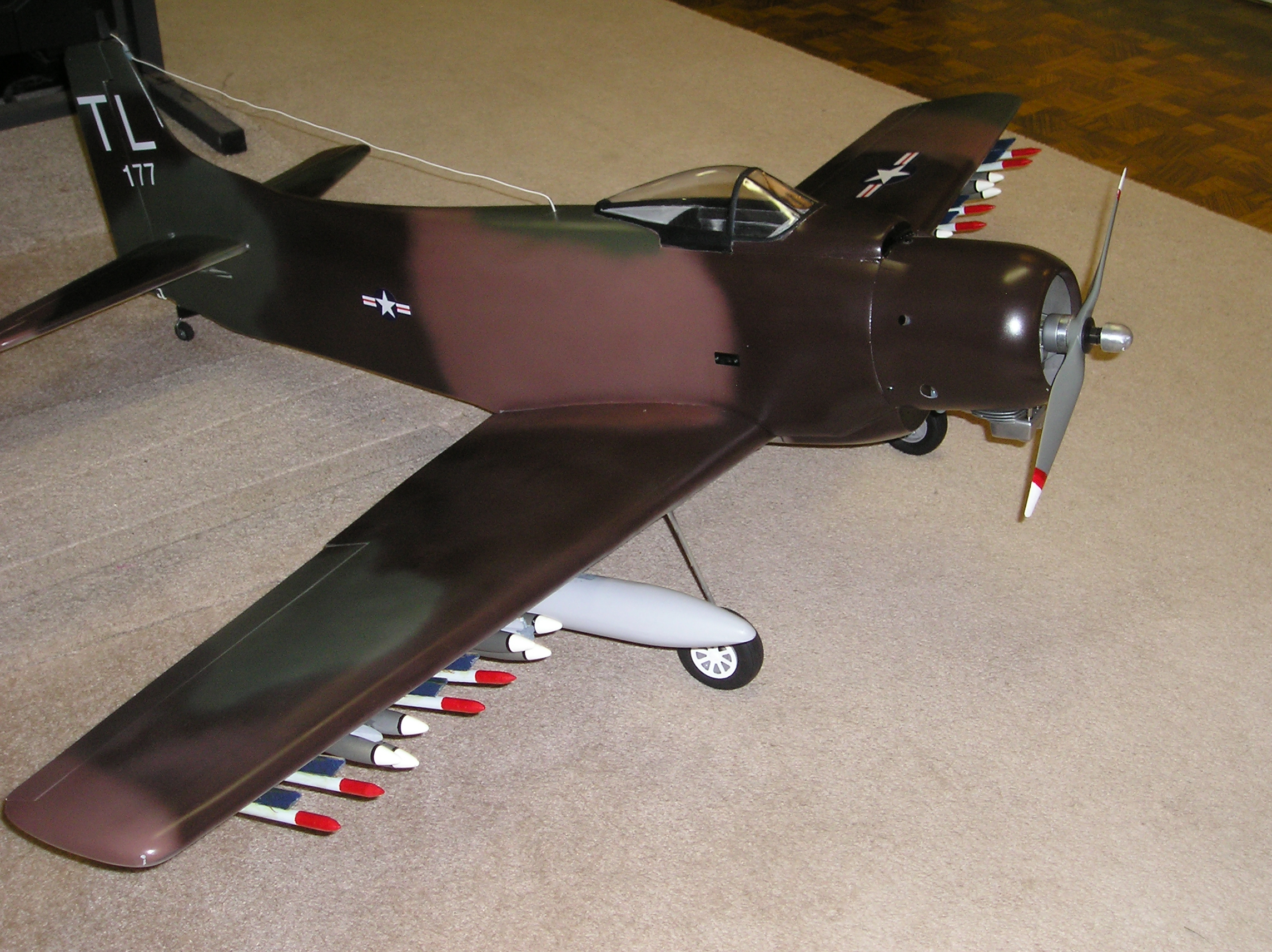 Click image for larger version  Name:2011 Skyraider 002.JPG Views:344 Size:2.11 MB ID:2109600