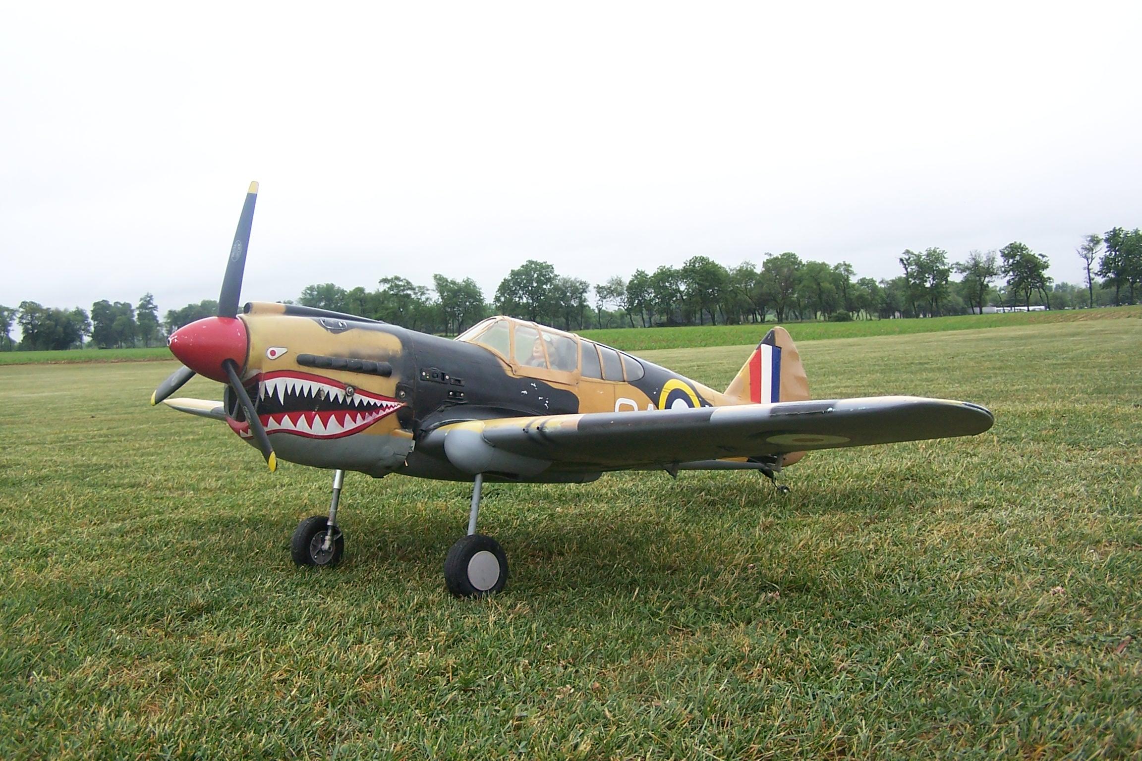 P-40 Brotherhood (All P-40's Welcome) - Page 56 - RCU Forums