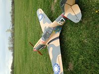 Click image for larger version  Name:P-40 1.JPG Views:40 Size:153.8 KB ID:2156647