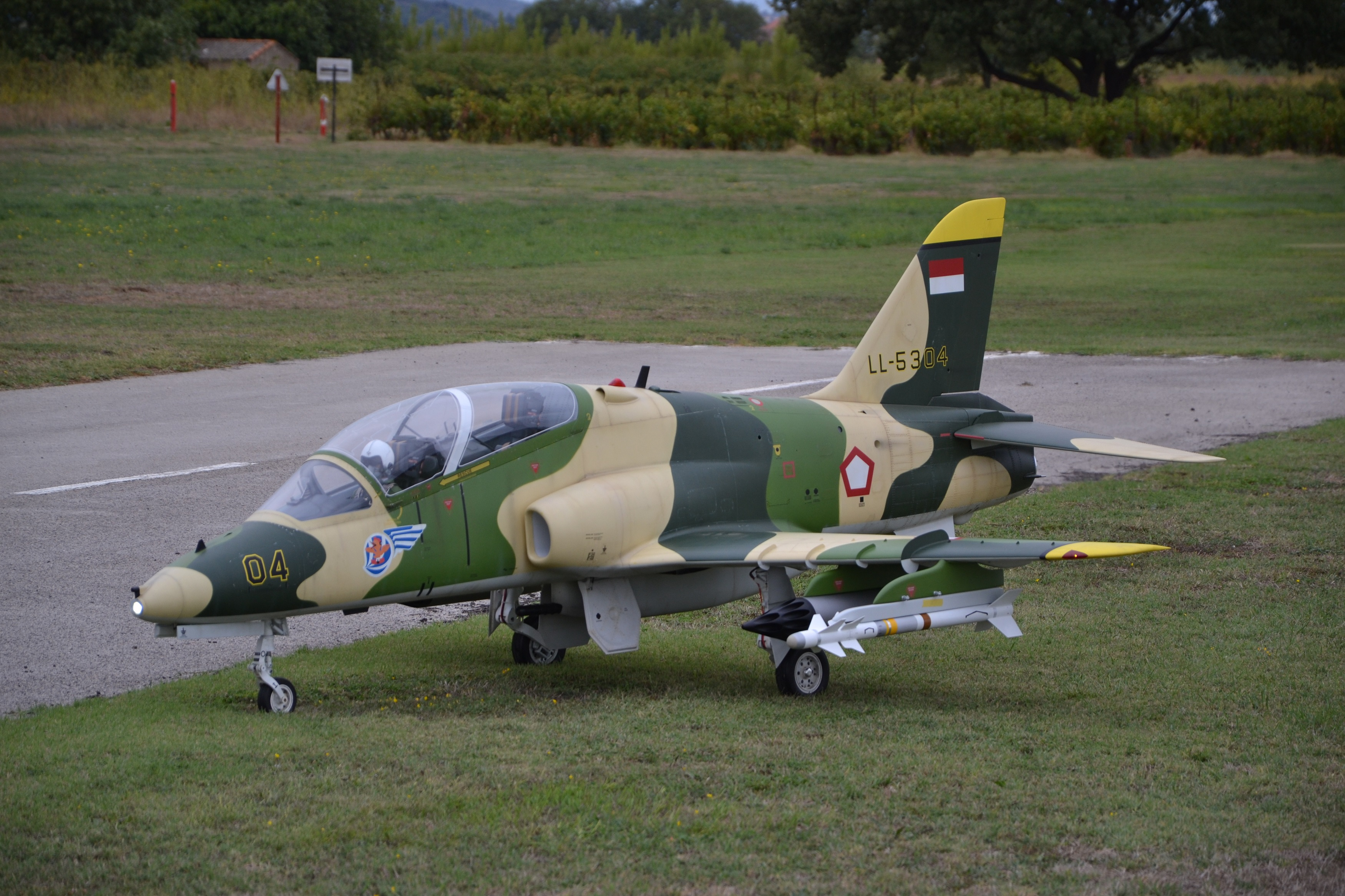 Click image for larger version  Name:hawk1.JPG Views:902 Size:1.90 MB ID:2192689