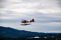 Click image for larger version  Name:Boss Beaver in flight.jpg Views:50 Size:65.5 KB ID:2205039